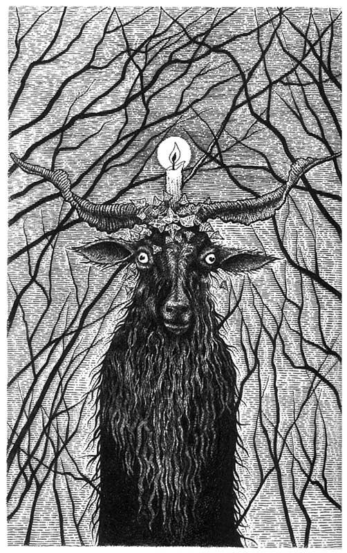 gemma_goat