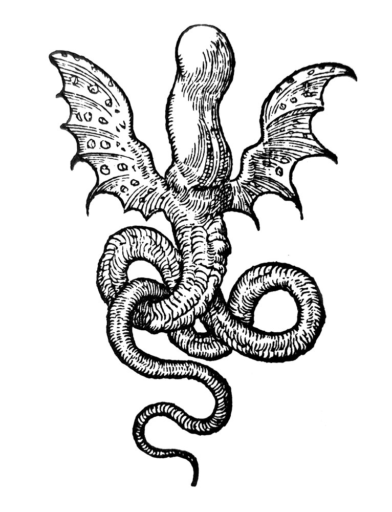 Chimeric image from the internal title page